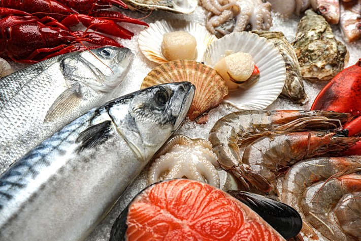 What You Need To Know About Fish Suppliers