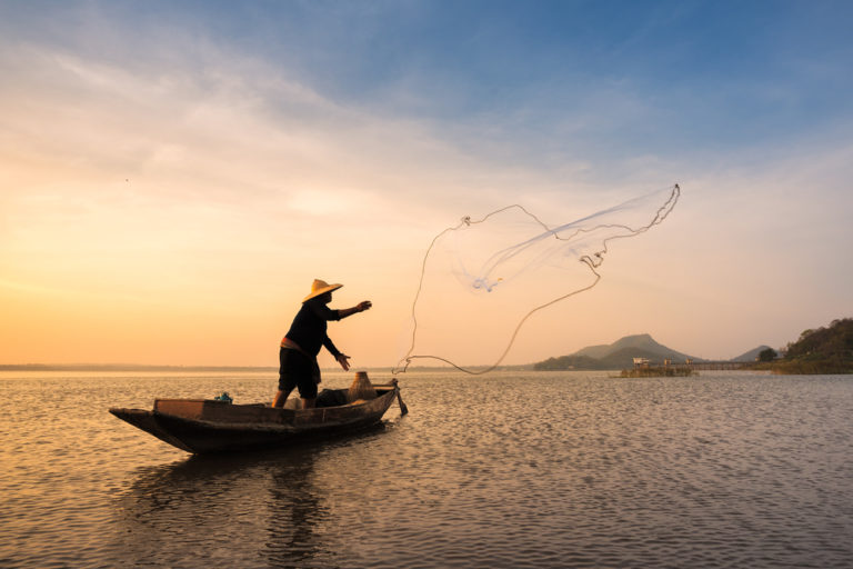 How To Choose The Right Fish Supplies For You
